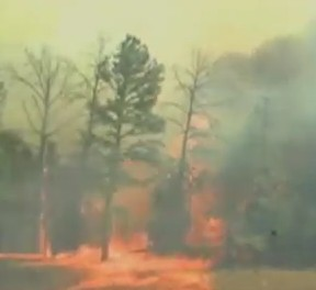 Texas wildfires are likely to have been caused by sparking power lines, officials say.